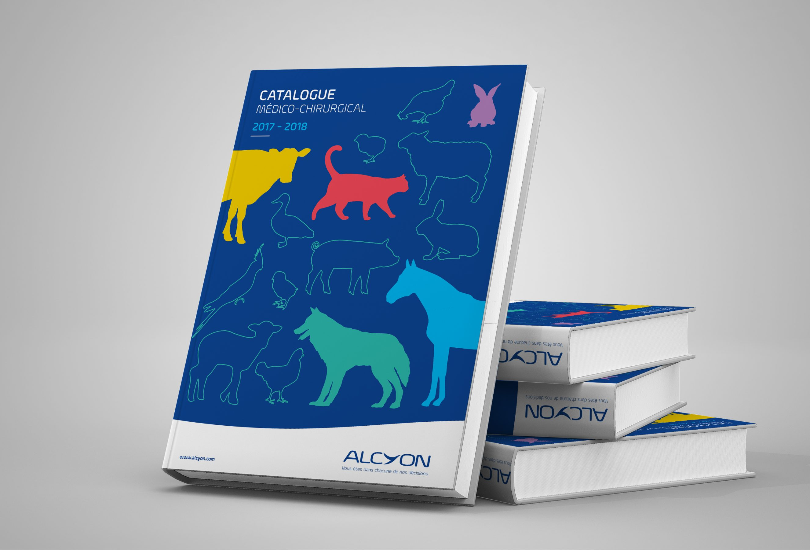 Agence conseil en communication nantes LATITUDE Client alcyon catalogue